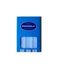 ETIQ.PEGASOLA 3030 33X75 MM