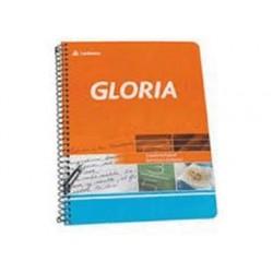 CUAD.16/21 GLORIA X46H...